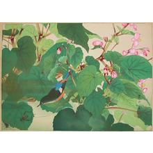 Rakuzan: Late Autumn: Begonia and Ruribitaki - Ronin Gallery