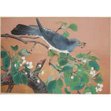 Rakuzan: Late Spring: Flowers of Mountain Pear and Cuckoo - Ronin Gallery