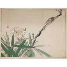 Kono Bairei: Cicada - Ronin Gallery