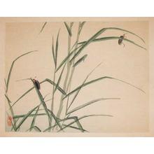 Kono Bairei: Fireflies - Ronin Gallery