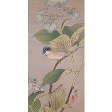 河鍋暁翠: Tit and Hydrangea - Ronin Gallery