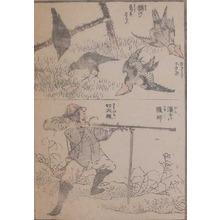 葛飾北斎: Bird Hunting - Ronin Gallery