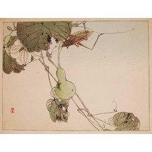 Watanabe Shotei: Locust and a Gourd - Ronin Gallery