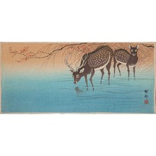 Shoson: Deer - Ronin Gallery