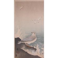 Koson: Sea Gulls on Shore - Ronin Gallery