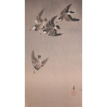 Koson: Starlings in Flight during Rain Shower - Ronin Gallery