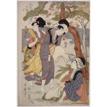 Kitagawa Utamaro: - Richard Kruml