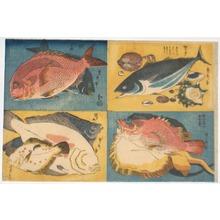 Utagawa Sadahide: - Richard Kruml