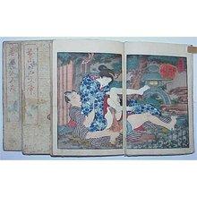 Unsigned Shunga: - Richard Kruml