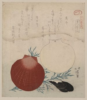 Totoya Hokkei: Shellfish. - Library of Congress