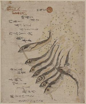 Teisai Hokuba: Sardines. - Library of Congress