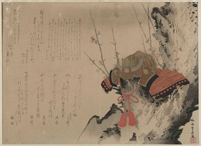 Ryūsai Shigeharu: Helmet on a Plum Tree. - アメリカ議会図書館