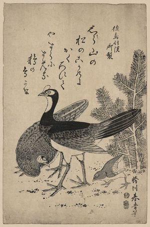 Unknown: Wildfowl and pine. - Library of Congress