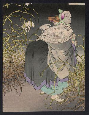 Tsukioka Yoshitoshi: The fox trap. - Library of Congress