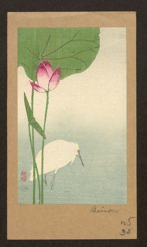 Baison: White heron and lotus. - アメリカ議会図書館