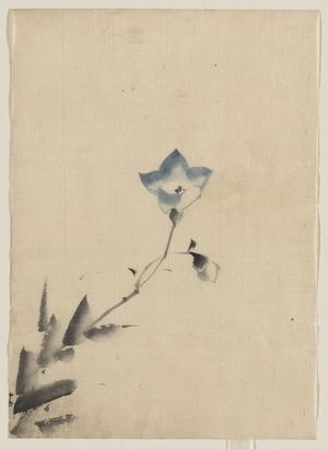 Katsushika Hokusai: [Blue blossom at the end of a stem] - Library of Congress