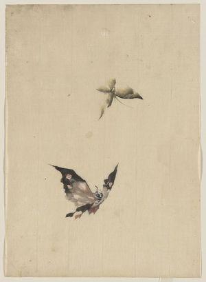 Katsushika Hokusai: [Butterfly and moth] - Library of Congress
