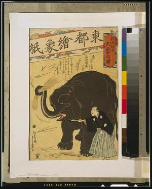 落合芳幾: Big imported elephant. - アメリカ議会図書館