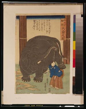 歌川芳豊: Big imported elephant from India. - アメリカ議会図書館