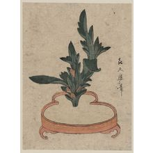 Kitagawa Tsukimaro: Rikka flower arrangement of Haran. - Library of Congress