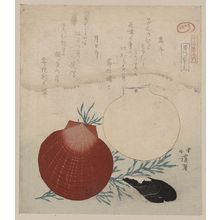 Totoya Hokkei: Shellfish. - Library of Congress