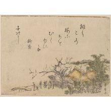 歌川豊広: Plum tree of a country farmhouse. - アメリカ議会図書館
