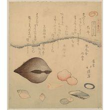 Totoya Hokkei: Aragai, masuōgai, anagai: clams. - Library of Congress