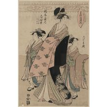 Chokosai Eisho: The courtesan Shinateru of the Okamoto-ya. - Library of Congress