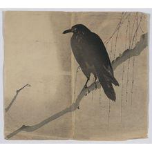 無款: Crow on a willow branch. - アメリカ議会図書館