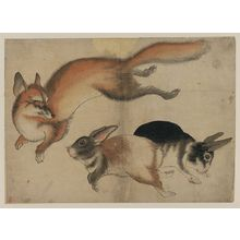 Unknown: [Fox and two hares] - Library of Congress