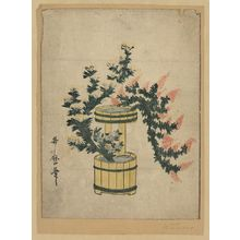 Utamaro II: Potted autumn grasses and Rikka. - アメリカ議会図書館