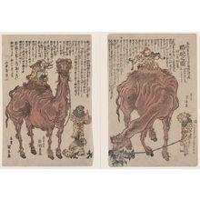 歌川国安: A pair of camels. - アメリカ議会図書館