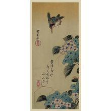 歌川広重: Hydrangea and Kingfisher. - アメリカ議会図書館