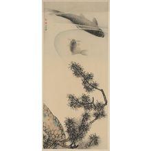 Maruyama Ōkyo: Koi under a pine branch. - Library of Congress