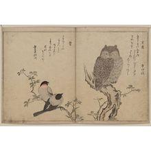 Kitagawa Utamaro: Bullfinch and horned owl. - Library of Congress