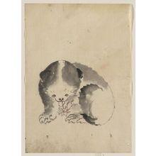 葛飾北斎: [A cat cleaning its claws] - アメリカ議会図書館