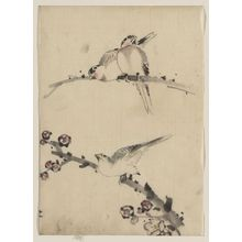 葛飾北斎: [Three birds perched on branches, one with blossoms] - アメリカ議会図書館