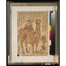 歌川国安: [Camel] - アメリカ議会図書館