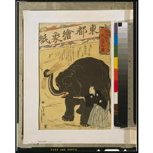 Ochiai Yoshiiku: Big imported elephant. - Library of Congress