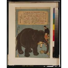 歌川芳豊: Big imported elephant. - アメリカ議会図書館