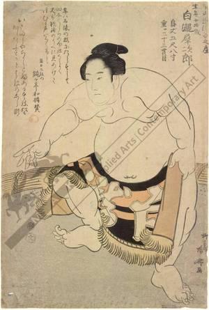 柳々居辰斎: Sumo wrestler Shirataki Saijiro (title not original) - Austrian Museum of Applied Arts