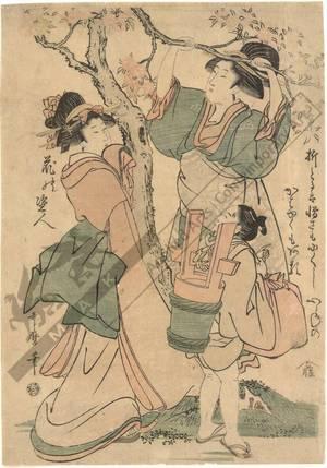 喜多川歌麿: Breaking a cherry branch (title not original) - Austrian Museum of Applied Arts