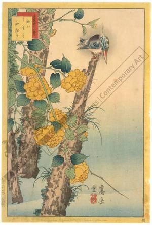 Nakayama Sugakudo: Kingfisher and Yellow Rose - Austrian Museum of Applied Arts