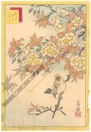 Nakayama Sugakudo: Japanese Robin and Wild Cherry Tree - Austrian Museum of Applied Arts