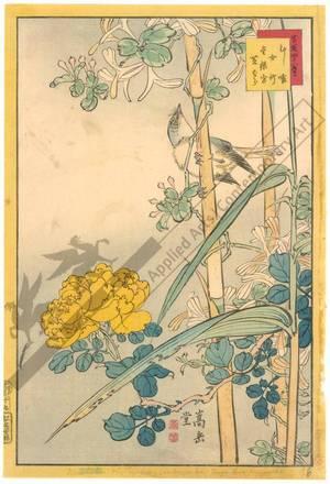 Nakayama Sugakudo: Bamboo, sleeping beauty - Austrian Museum of Applied Arts