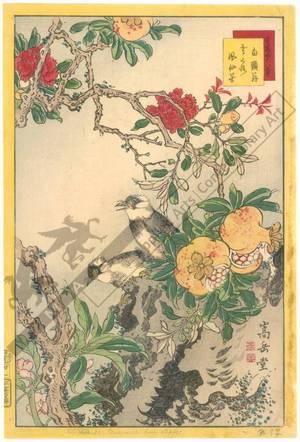 Nakayama Sugakudo: Starlings, Pomegranate and Balsam - Austrian Museum of Applied Arts