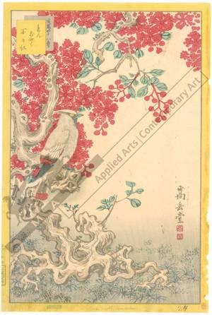 Nakayama Sugakudo: Crape Myrtle - Austrian Museum of Applied Arts