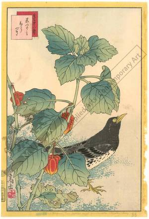 Nakayama Sugakudo: Black Throttel and Ground Cherry - Austrian Museum of Applied Arts