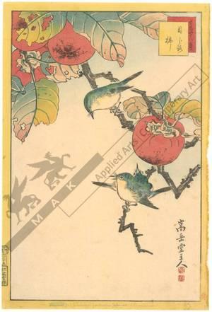 Nakayama Sugakudo: Japanese white-eyes and Persimmons - Austrian Museum of Applied Arts