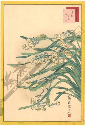 Nakayama Sugakudo: Wagtail and Daffodils - Austrian Museum of Applied Arts